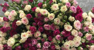 Кустовые розы — нежность и легкость в одном букете 3